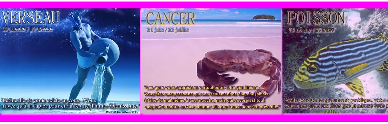 Horoscope Amoureux Hebdomadaire